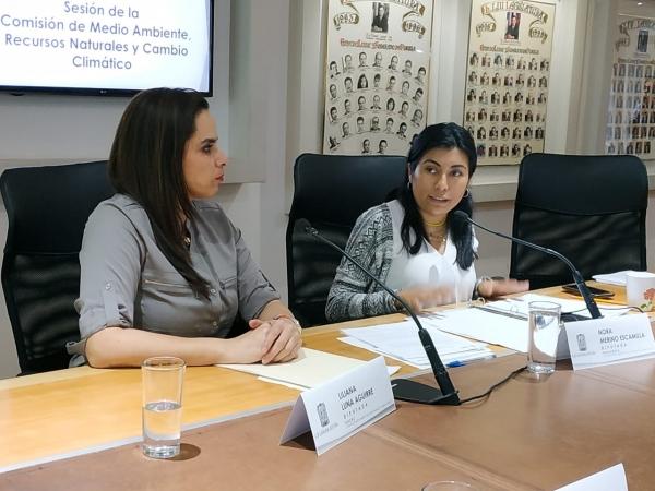 Acuerda Comisión del Medio Ambiente solicitar un informe al ejecutivo para conocer la calidad del aire en Puebla